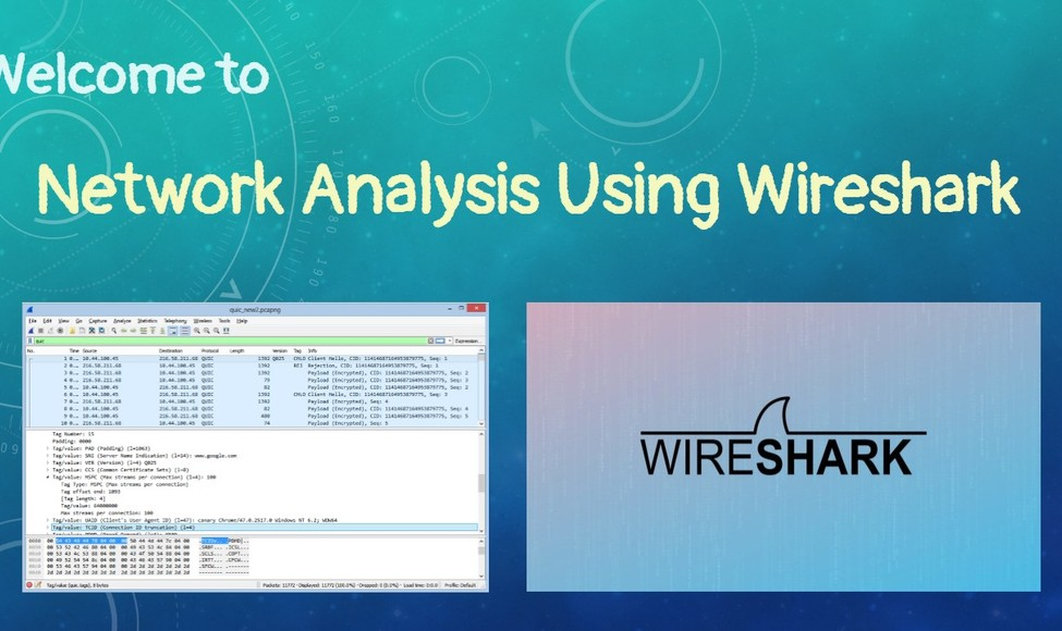 Main 1 network analysis using wireshark pangolin font